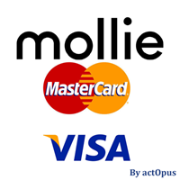 Picture of Mollie-compatible CreditCard payment plug-in for nopCommerce