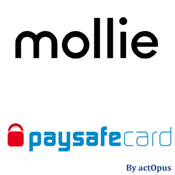 Paysafe Card Check